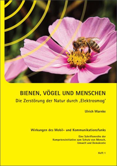 Bienen-Vögel-und-Mensch-Die-Zerstörung-der-Natur-durch-Menschen